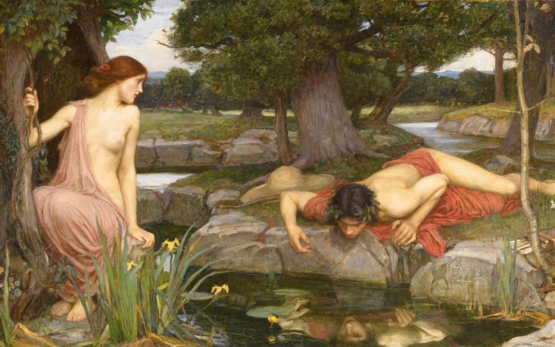 Weekly Theme: Giant Narcissus