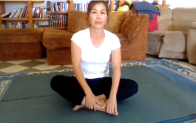 Protected: Thursday 6/18/20 9:30A Qigong Exercises